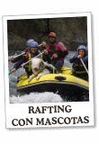 rafting_mascotas