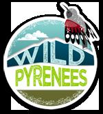 wildpyrenees